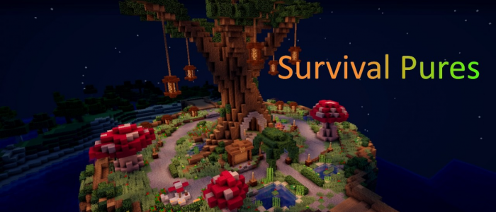 Survival Pures- A survival server with build ranks!
